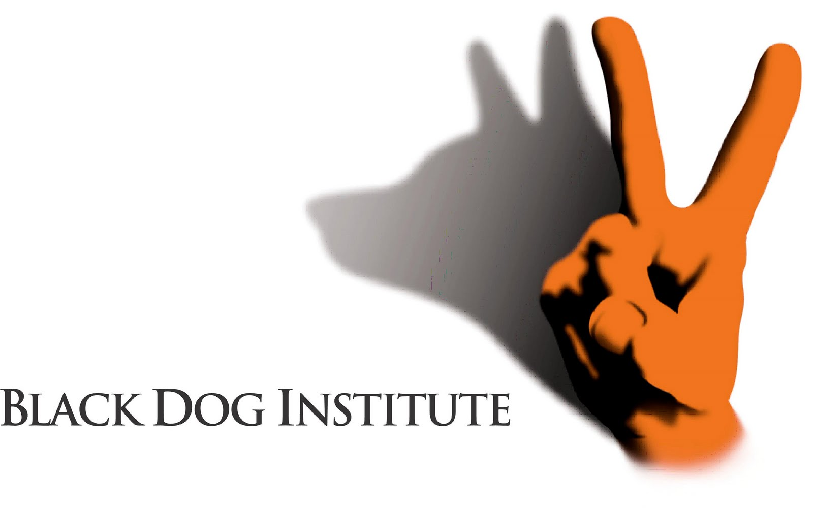 Bipolar  Disorder Black Dog Institute